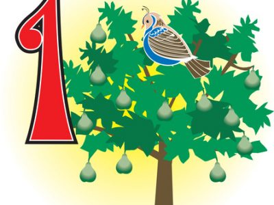 Image of a partridge in a pear tree